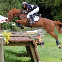 Henton Executive produced to 3*** eventing