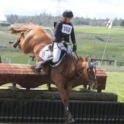 Balmoral Cougar Pedy produced to 2** eventing
