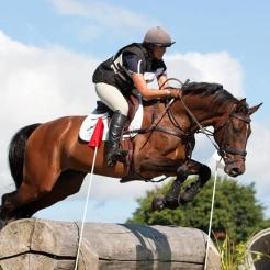 Winston SW produced to 1* eventing