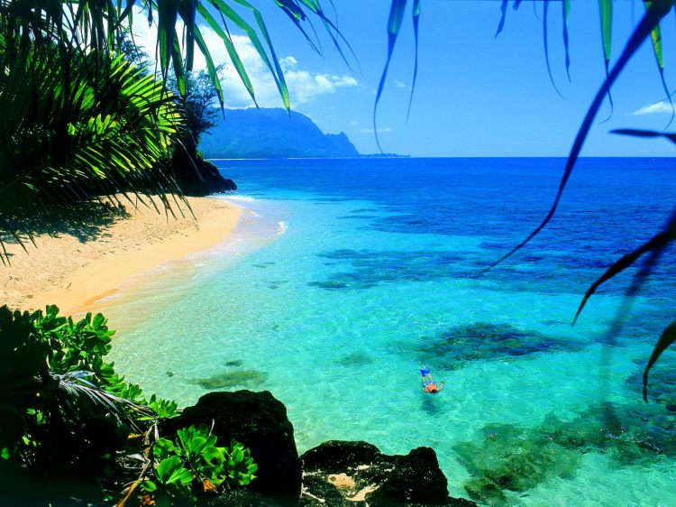 Hawaii-Beaches-Wallpaper